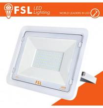 Proiettore per esterni Bianco 100W - IP65 115° 6500K