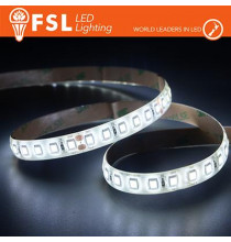 Striscia LED 5m IP65 SILICON 2835 24V - 12W/m 120led/m 3000K
